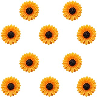 Joyci 10-Pack Women Brooch Lapel Pins Novelty Sunflower Daisy Safety Push Pin Buckle for Shirt Hat Cardigan Sweater Decora...