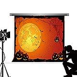 Kate Fondo de Halloween paño Suave de Microfibra bebé fotografía de Fondo Castillo abandonado Tumba de Fondo Vampiro Photocall fotografía Profesional Estudio de Fondo 7x5ft / 2.2x1.5m