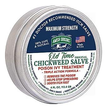Best chickweed healing salve Reviews