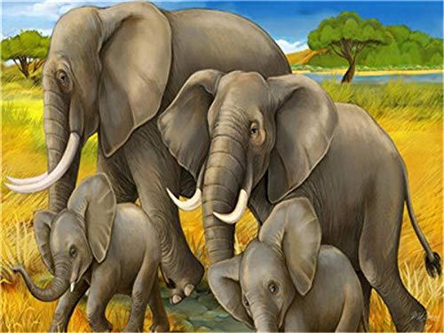 Pintura por Numeros, Pintar con Numeros Kits-Grupo de elefantes Cuadros para Pintar por Numeros Decoraciones para el Hogar - Sin Marco 40x50CM