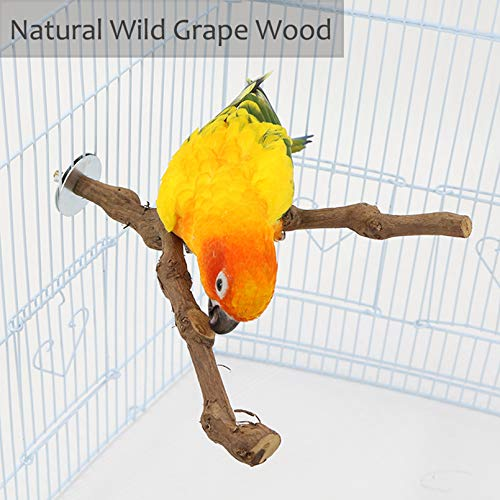 kathson Parrot Perches, Birds Stand Pole Natural Wild Grape Stick Grinding Paw Climbing Standing Cage Accessories Toy Branches for Parakeet, Budgies, Lovebirds