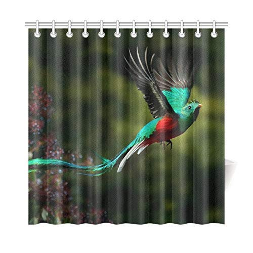 Presock Home Decor Bath Curtain Flying Resplendent Quetzal Pharomachrus Mocinno Savegre Polyester Fabric Waterproof Duschvorhang for Bathroom, 72 X 72 Inch Duschvorhangs Hooks Included