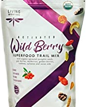 Organic Activated Sprouted No Sugar Added Wild Berry Superfood Trail Mix - 22 oz.