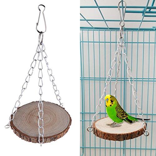 autone Parrot Swing Toys Bird Perch Hamster Eichhörnchen Holz zum Aufhängen Käfig Kette Dekoration