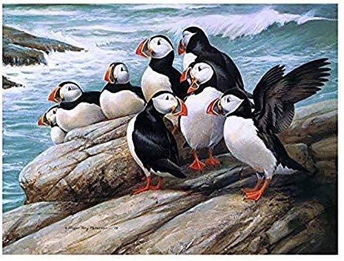 ZLJ Vaivén De Puzzle Juegos De 1000 Piezas Pingüinos En Piedras Madera Materiales Clásicos Juguetes Diversión Casual Puzzle Juegos De Montaje para Niños Y Adultos