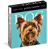 Dog Page-A-Day Gallery Calendar 2020