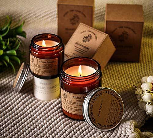 Vela perfumada en tarro de vela vela natural de cera de soja para mujeres regalos para alivio del estrés y aromaterapia relajación (eucalipto de lavanda, 100 g)