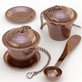 Loose Leaf Tea Infuser (Set of 2) with Tea Scoop and Drip Dray by Apace - Ultra Fine Stain...