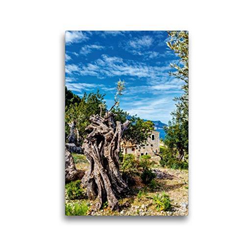 Premium Textil-Leinwand 30 x 45 cm Hoch-Format Mallorcas Impressionen Westküste | Wandbild, HD-Bild auf Keilrahmen, Fertigbild auf hochwertigem Vlies, Leinwanddruck von Jürgen Seibertz