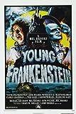 Young Frankenstein Film Poster 28cm 4327,9x 43,2cm