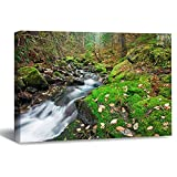 VinMea Wall Art Canvas Moss Creek Campground Litlle White Salomon River Oregon Strecthed Poster Picture Ready to Hang Modern Home Art Decor, 20 x 30 Inch