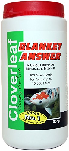 Price comparison product image Cloverleaf Blanket Answer 800grm By Cloverleaf