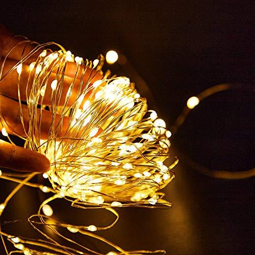 ZYHYCH Cadena de luces de alambre de cobre con LED plateado decorativo, luces de hadas AA con pilas 1M 10 2M 20 3M 30 5M 50 10M 100 Leds, Blanco cálido, 5m 50Led