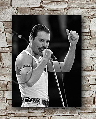 Poster Freddie Mercury, 45,7 x 61 cm, Freddie Mercury Poster