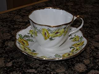 salisbury fine bone china