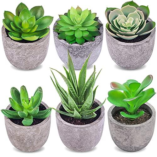 Frasheng 6 Piezas de Plantas Suculentas Artificiales en Macetas,Planta Artificial Decorativa,Plantas Suculentas Artificiales Verdes,Mini Plantas Suculentas en Macetas,para Oficina,Decoración del Hogar