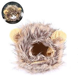 gossipboy Cute Pet Costume Perruque Funny Cat Kitty chiot vêtements pour chien Petit Chat Halloween chapeau robe de Pet chaud Bonnet avec oreilles, noir