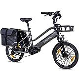 CHRISSON 20 Zoll E-Bike Lastenfahrrad ECARGO grau - Elektro Cargo Bike mit Bafang MaxDrive Mittelmotor 250W, 36V, 80 Nm, Lastenrad für Damen und Herren, praktisches Transport Elektrofahrrad