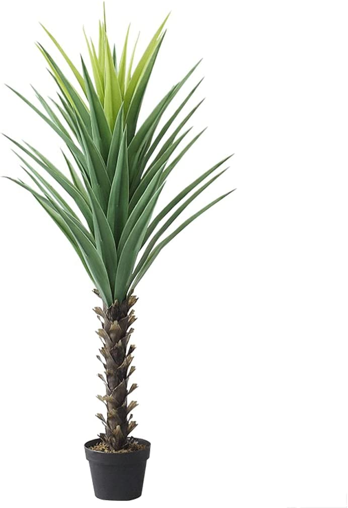 byby Artificial Plants Simulation Indoor Cycas Boston Mall Rapid rise