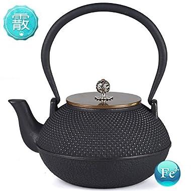 TOWA Workshop Tetsubin Teapot Cast Iron Japanese Style Hobnail 44OZ for Tea Brewing