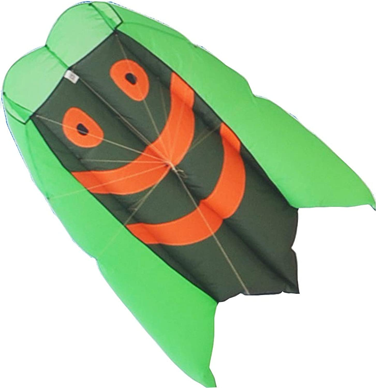 Kite Caixia, large adult soft body for seaside play beginners easy to fly (color   Green, Size   250m)