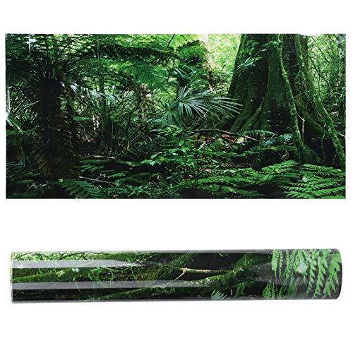 ViaGasaFamido Aquarium Poster, PVC Reptilien Terrarium Regenwald Hintergrund Poster Aquarium Wandbild Malerei Verdicken Dekoration Selbstklebende Aufkleber(61×41cm)
