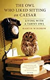 Living with a Tawny Owl The Owl Who Liked Sitting on Caesar (Paperback) - Common