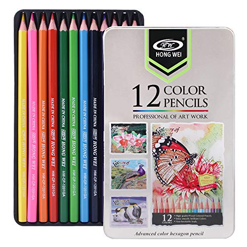 Drawing colored pencils & Art coloring pencil set,For Adults and Kids Beginners & Artists color pencils in tin Box.(12-Color)