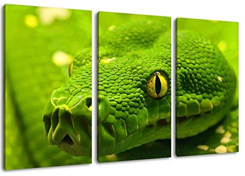 groen anaconda schilderij op doek, 3-delig (Totale Grootte: 47.2