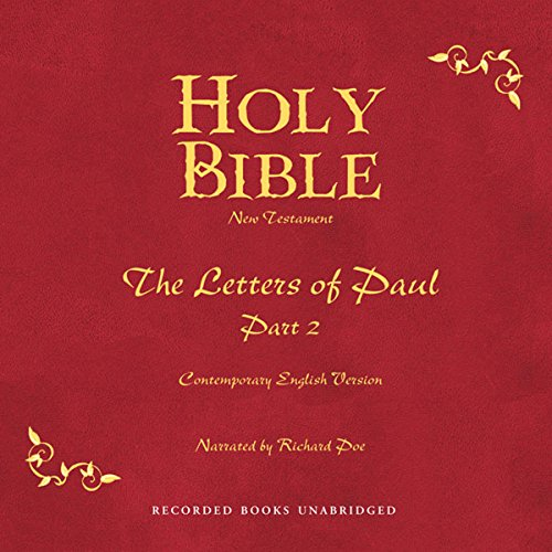 Holy Bible, Volume 28 audiobook cover art