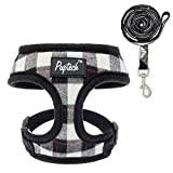 Best Dog Harnesses - PUPTECK Soft Mesh Dog Harness with Leash Review