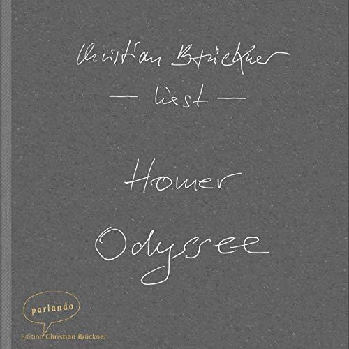 Homer Odyssee. Ein Weltgedicht