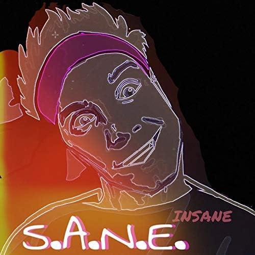 S.A.N.E.