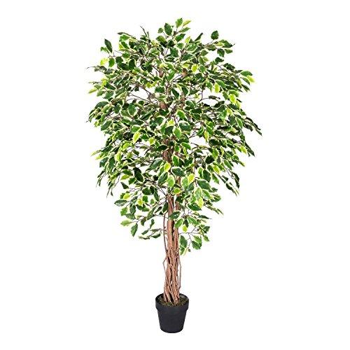 Homescapes -   Kunstbaum Ficus
