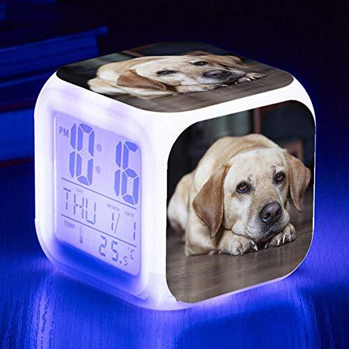 HUA5D Despertador Digital Perro Mascota Infantil Regalos De Cumpleaños Wake Up Light Alarm Clocks Niño & Niña Dormitorio Decorar-Niños 7 Color Cambiante Luz Nocturna Lampara De Cabecer(B183)