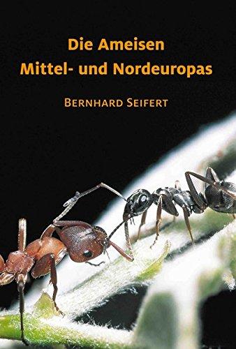 Die Ameisen Mittel- und Nordeuropas