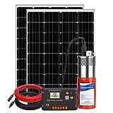 DCHOUSE Bomba solar de pozo profundo con kit de panel solar, bomba de agua de 24 V, 2 paneles solares monocristalinos de 100 W, controlador de 20 A, cable solar de 16,4 pies / 5 m