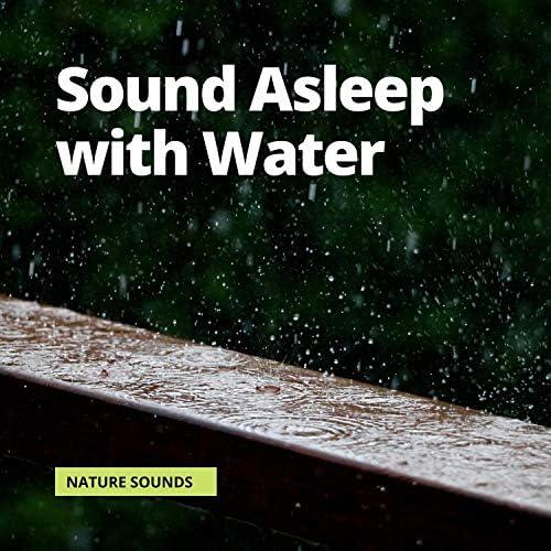 Rain Sounds, Relaxing Rain Sounds & Nature Sounds