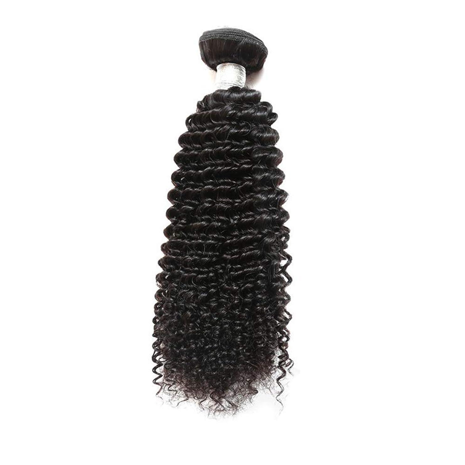 耐えられる英語の授業がありますもっともらしいBOBIDYEE ブラジルの巻き毛10Aグレードバージンヘアバンドル100%未処理のRemy人間の毛髪のエクステンションロールプレイングかつら女性の自然なかつら (色 : 黒, サイズ : 24 inch)
