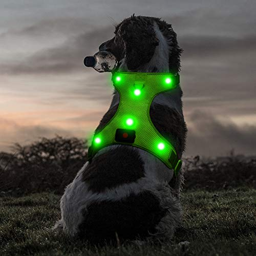 Ezier Glowing LED Dog Harness - USB Rechargeable No-Pull Puppy Harness, Adjustable Mesh Reflective Dog Vest for Night Dog Walking(Medium, Green)