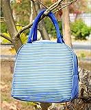 WUYUESUN Bolsa de Picnic Azul Fresco de la Caja, a continuación, como una Bolsa, Equipaje de Mano Caja de Almuerzo Bolsa de Rayas portátil