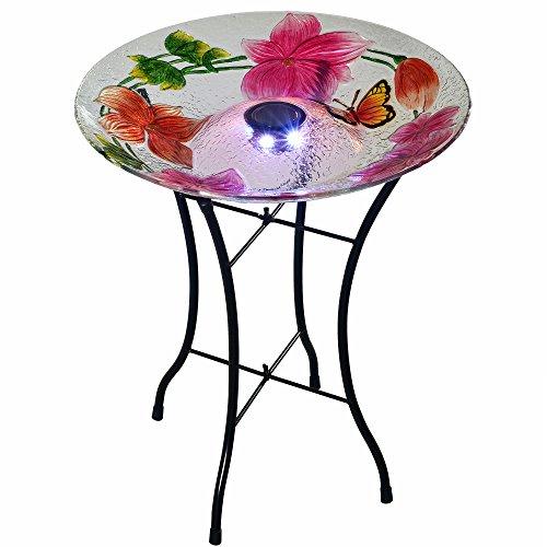 Peaktop Kolibrie spelen rond glas plaat vogel bad Bloem 18-Inch Meerkleurig
