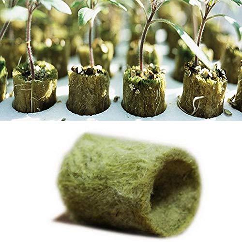 FADDARE Steinwolle würfel, 50/100pon Stonewool Grow Cubes Starter Sheets, Gartenarbeit Rockwool Starter Plugs Pflanzen Compress Base für Seed Start