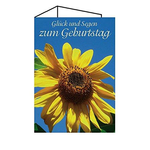 Junker Verlag 10er-Pack Geburtstagskarte - DIN A6 Klappkarte 3-teilig (6 Seiten) - christliche Glückwunschkarten Geburtstag - Sonnenblume