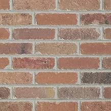 Single Thin Bricks - Flats for Brickwebb (Box of 50) - Dixie Clay