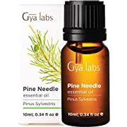 Gya Labs Pine Essential Oil - Pain Reliever for Ache Free Body, Better Focus & Cleaner Air (10ml) - 100% Pure Natural Therapeutic Grade Pine Oil Essential Oils for Aromatherapy Diffuser & Topical Use