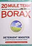 Borax Flea Killer