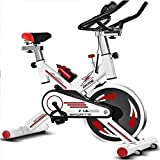 ZnMig Exercise Bike Home Exercise Bike Ultra-Quiet Indoor Sports Fitness Equipment (Color : White, Size : 102x50x120cm)