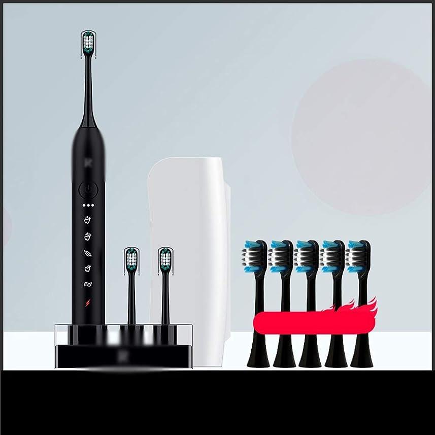 新鮮な悪用ベギンJia Xing 電動歯ブラシヘッド超音波電動歯ブラシ自動充電セット電動歯ブラシ充電器ブラケット 電動歯ブラシ (Color : Black)