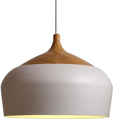 Sadasd Plafonnier moderne moderne minimaliste pour salon restaurant bar café en fer forgé Pot Lustre D350 x 320 mm